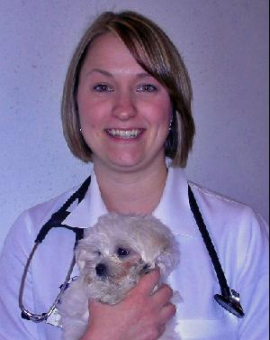 Georgetown Animal Clinic, PC - Veterinarian serving Williamsville, Amherst and Buffalo NY areas: Dr. Elizabeth Yousey